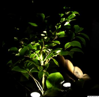 Solar Pool Light-0.2 Watt-8 Hours Working Time