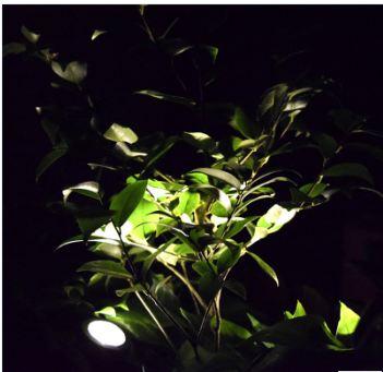 Solar Pool Light-0.2 Watt-ABS Material